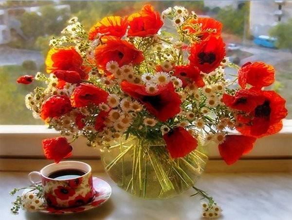 Výsledok vyhľadávania obrázkov pre dopyt good morning flowers hd