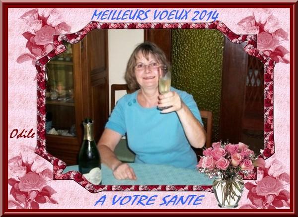 MEILLEURS VOEUX 2014 ET A VOTRE SANTE/POUR VOUS