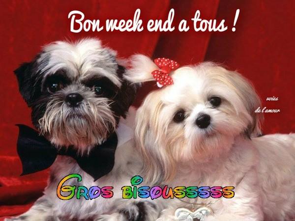 Bon weekend - Bon week end a tous ...