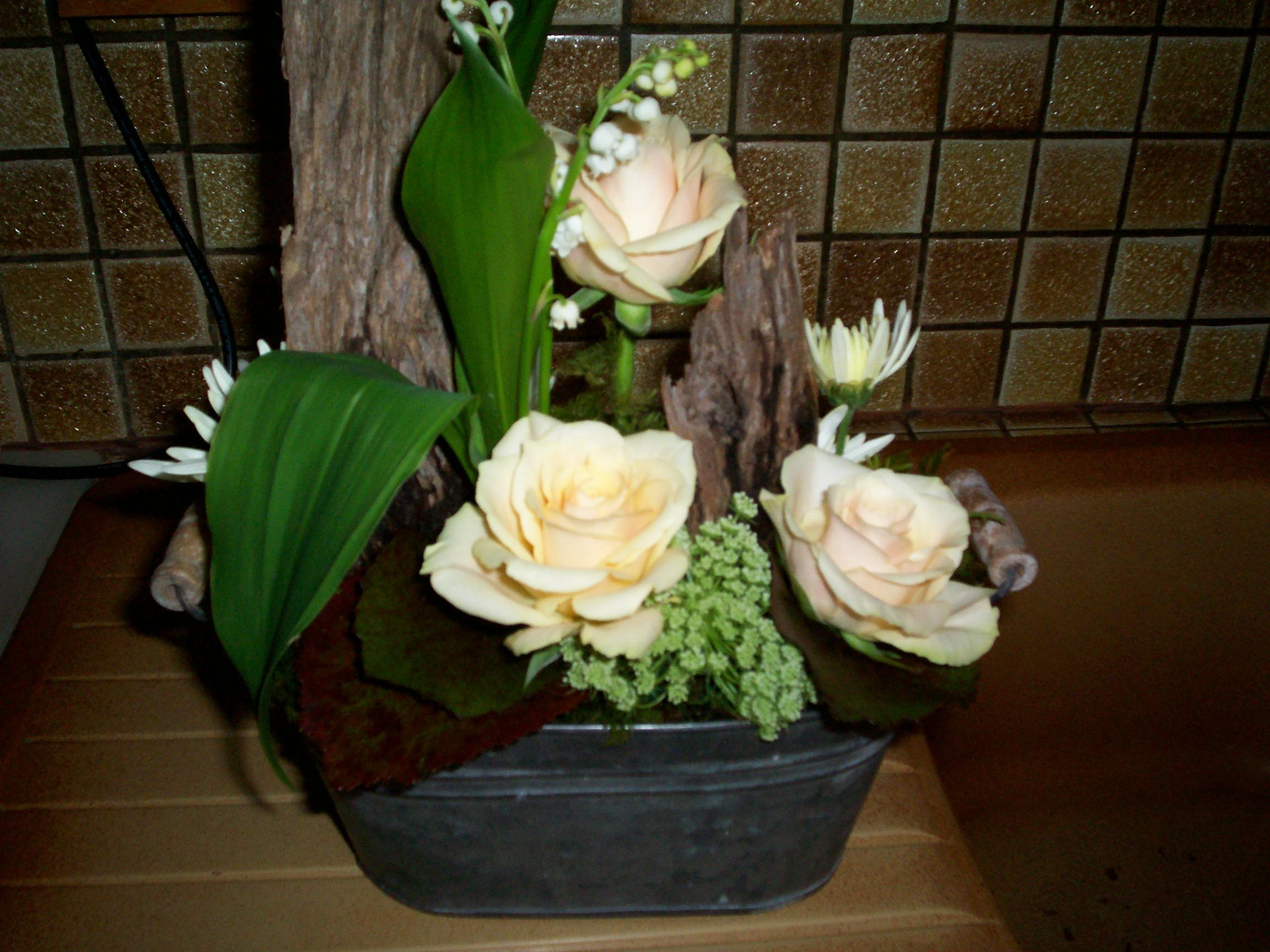 Encore qq fleurs de mon jardin pour vous for Jardin pour vous