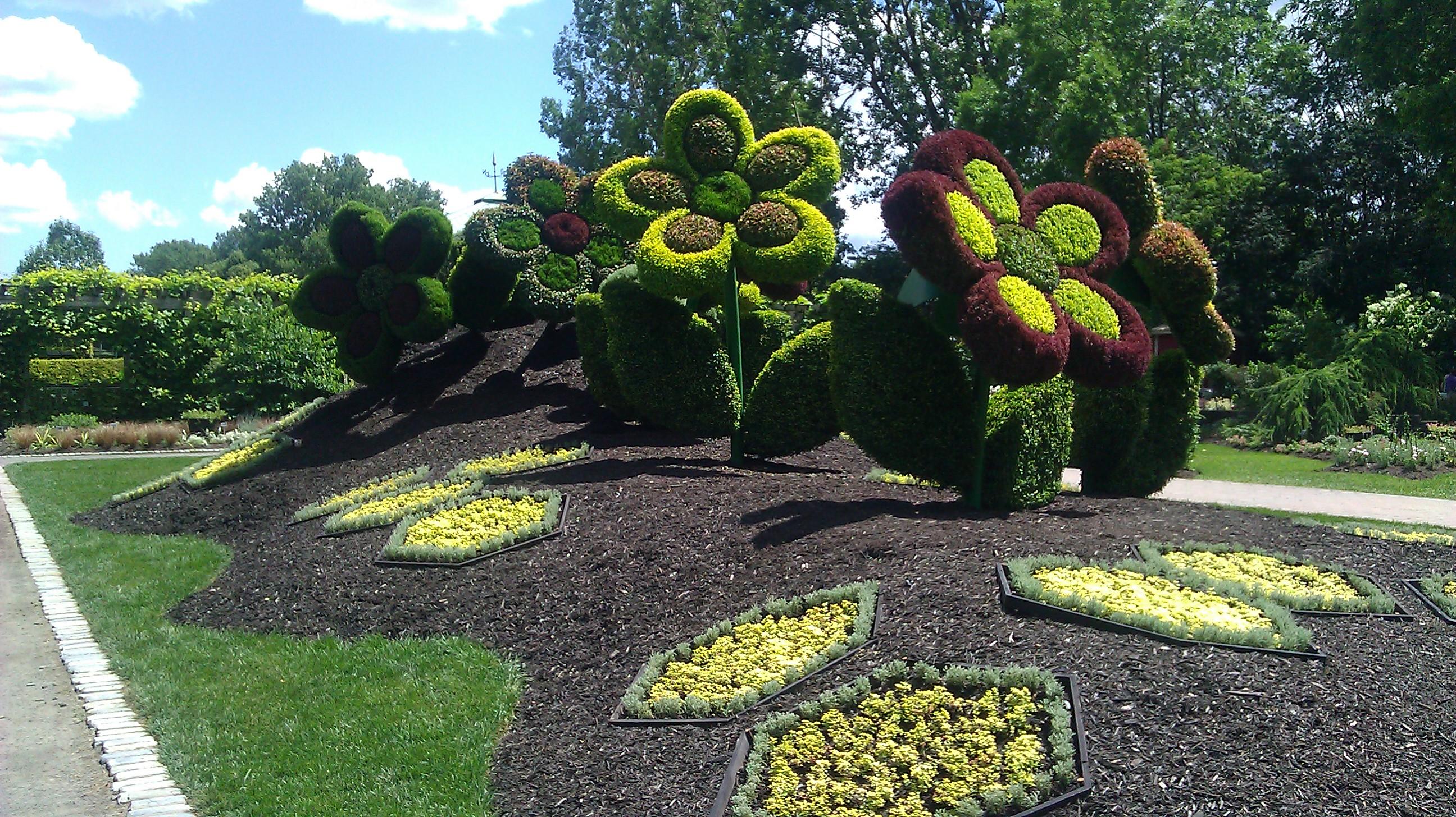 Jolies fleurs jardin botanique mosa cultures envoi d elise for Botanique jardin